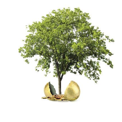Hybride : une fiscalité verte et avantageuse