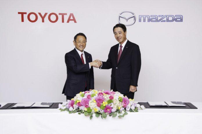 Alliance Toyota Mazda
