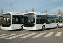 Brest Bluebus
