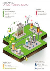 Projet biotfuel Total