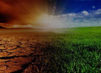 """Bioénergies - rapport spécial du GIEC """"Changement climatique et terres"""""""