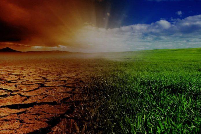 Bioénergies - rapport spécial du GIEC