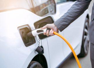 véhicules légers électrifiés juin 2020