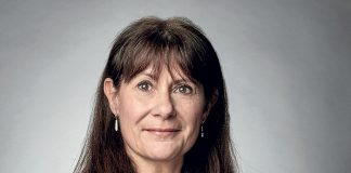 Valérie Maris, Linde France et Linde Homecare